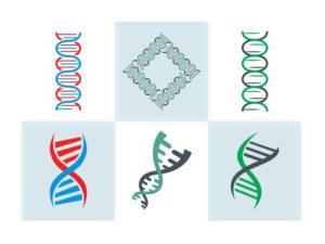 ADN (con sus hélices estilizadas)
